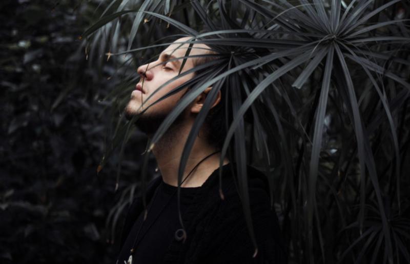 Suvi 2017 – koostanud Mick Pedaja